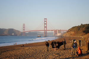 SAN FRANCISCO'S BEACH