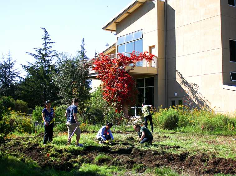 De Anza College students come together and work hard to start the garden outside of the Kirsch Center on Oct. 16.