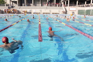 Men's water polo outplays Cabrillo