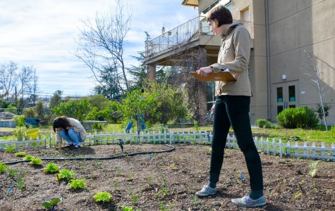 The Kirsch Center: De Anza's own cultivating garden and hangout spot