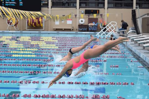 De Anza swimmers and divers meet Cabrillo in aqueous affair