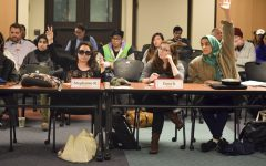 DASB Senate passes resolution to divest from Israeli occupations