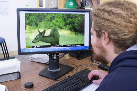 De Anza student intern, Robert Scott looks at a deer on recorded footage on Jan. 18.