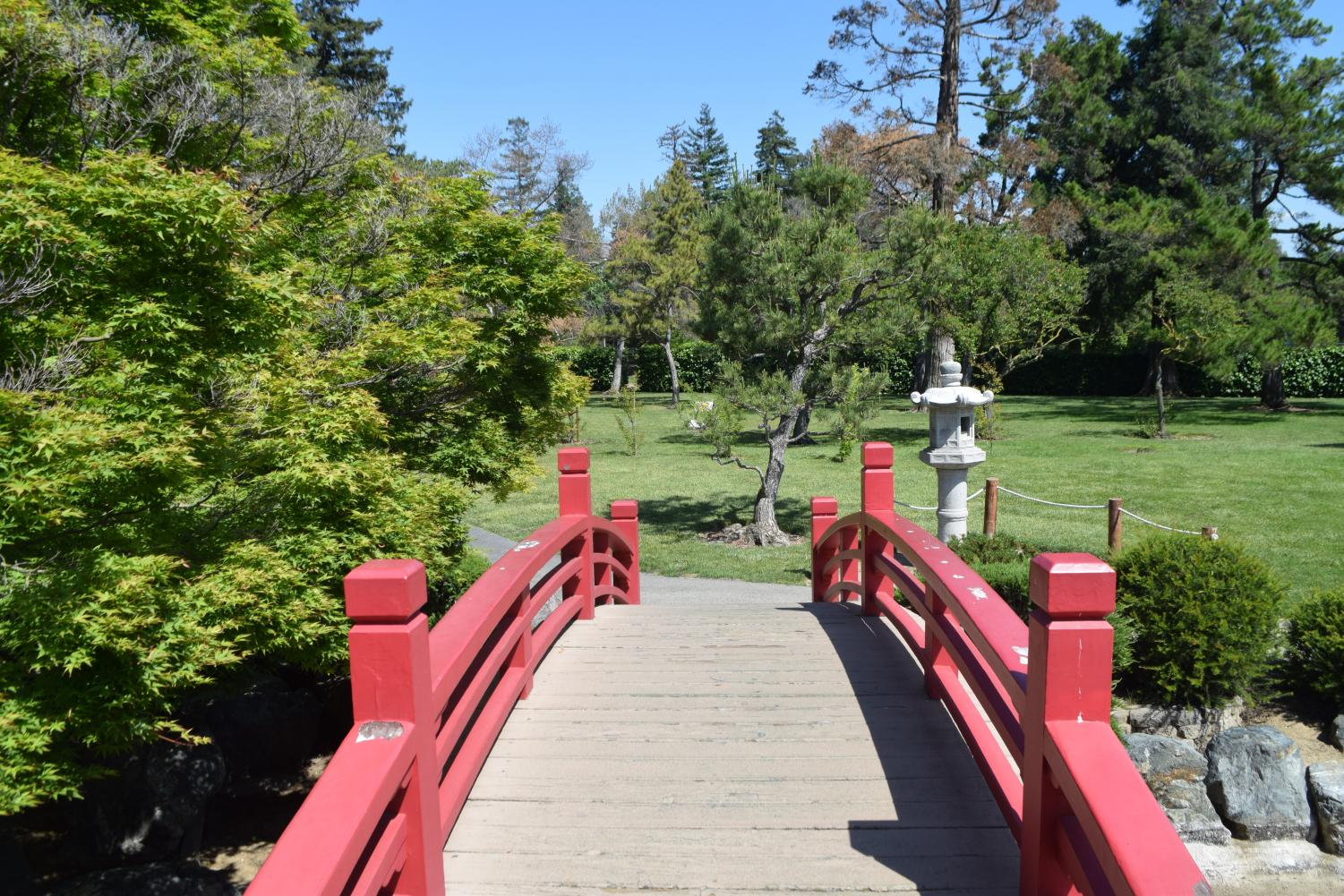 Small+bridge+overlooking+a+part+of+the+Japanese+Friendship+Garden.