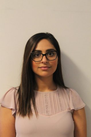 Photo of Saman Mashayekhi