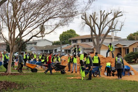 Volunteers use wheelbarrows to pick up the safety surfacing fibar.