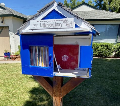 Free Little Libraries foster community book exchanges during pandemic