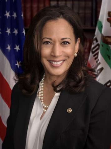 Vice president elect Kamala Harris sparks hope in me, and the Indian community.