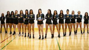 Photo of De Anza women's volleyball team, courtesy of De Anza College Athletics