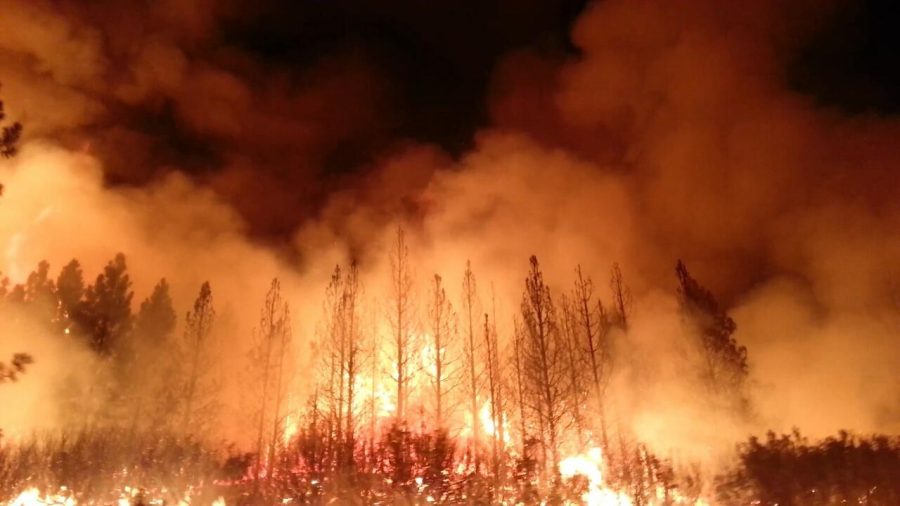 Wildfires this year may be more devastating due to an increased drought.